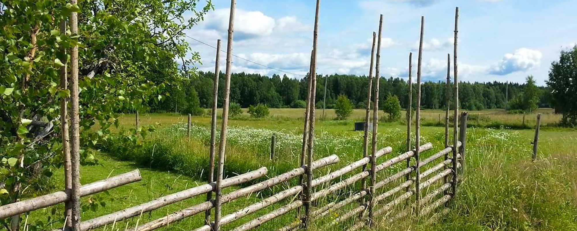 Bild på smålänskt landskap med ängar och gärdesgård
