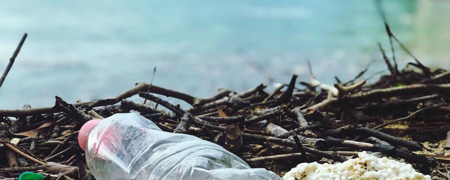Bild på plast i naturen