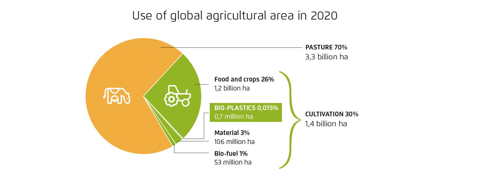 Agriculture Area 2020